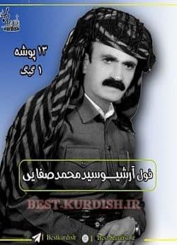 فول آلبوم سید محمد صفایی - 13 پوشه